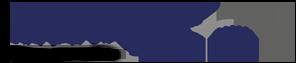 nitetronic logo